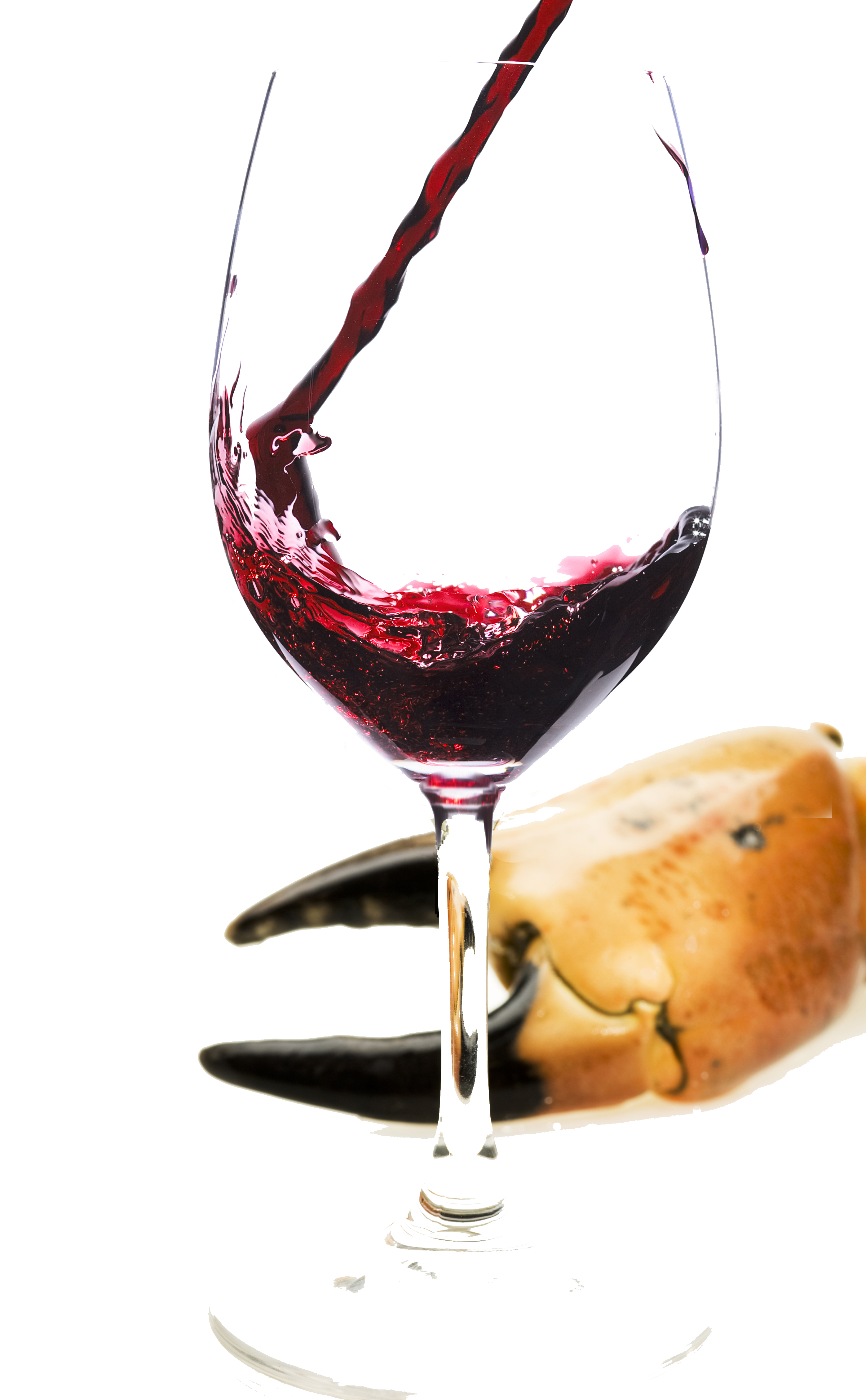 Red wine with fish surely not berry bros rudd wine blog for White wine with fish