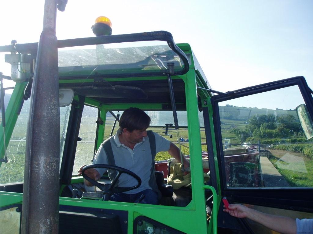 Dominique Lafon preparing to harvest
