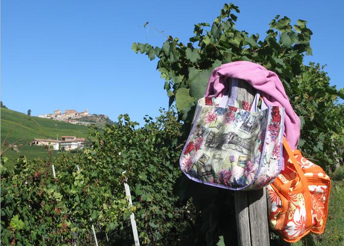 bartolo-mascarello-vineyard