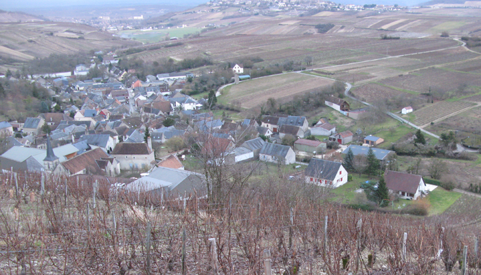 Views from Cotat's Culs de Beaujeu vineyard
