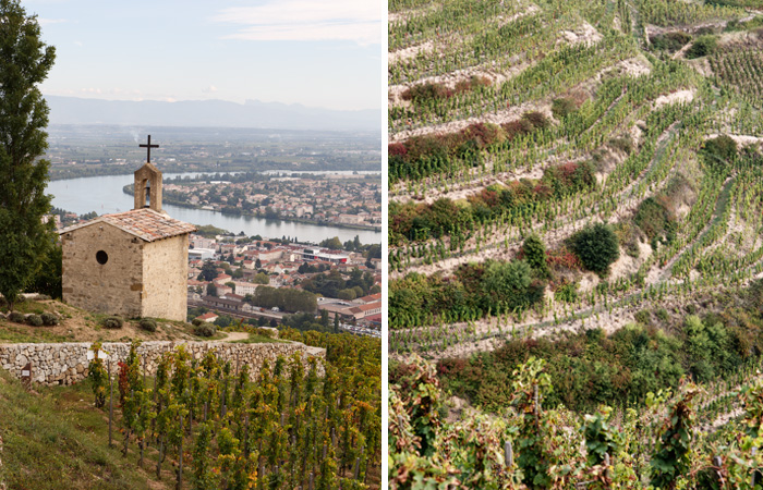 rhone-terraces