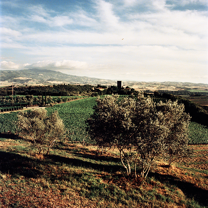 The Castello di Argiano estate in the Montalcino district makes the traditional,   and now thriving,   Brunello di Montalcino – and other wines including a Merlot-Cabernet Toscana IGT. Photograph: Jason Lowe
