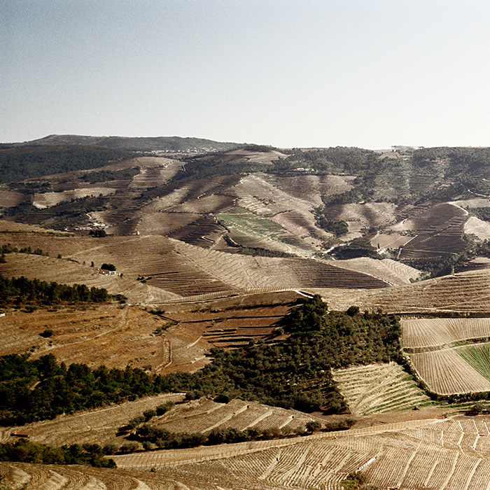 The Douro Valley. Photograph: Jason Lowe