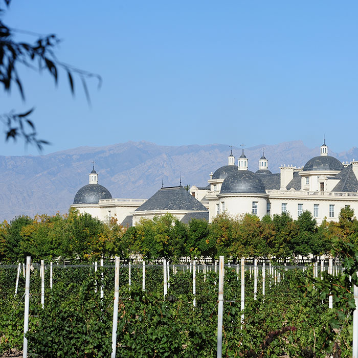 Château Changyu Moser XV, Ningxia, China