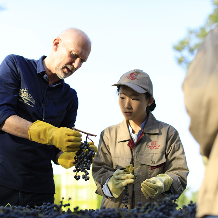Winemaker Lenz Moser at Château Changyu Moser XV, Ningxia, China