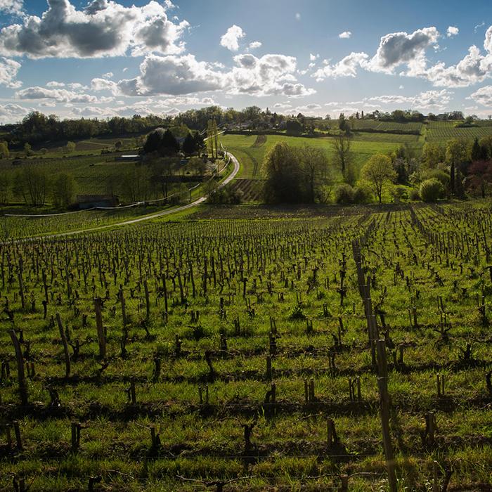 Domaine de l'A, Côtes de Castillon, Bordeaux