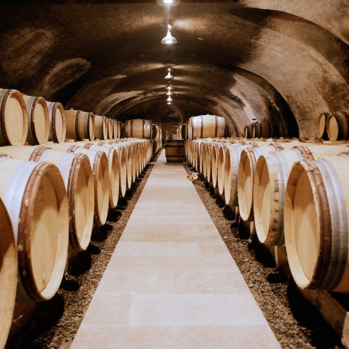 In Olivier Merlin's cellar in La Roche-Vineuse, Macon, Burgundy. Photograph: Jason Lowe