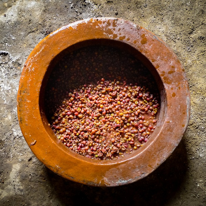Skin maceration - the process that produces the colour and flavour in orange wines, taking place in a qvevri. Photograph: Slobodne Vinartsko