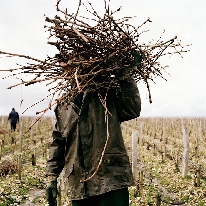 Bordeaux 2015, Southwold Tasting. Photograph: Jason Lowe