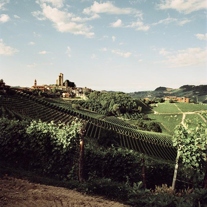 A view across Piedmont. Photograph: Jason Lowe
