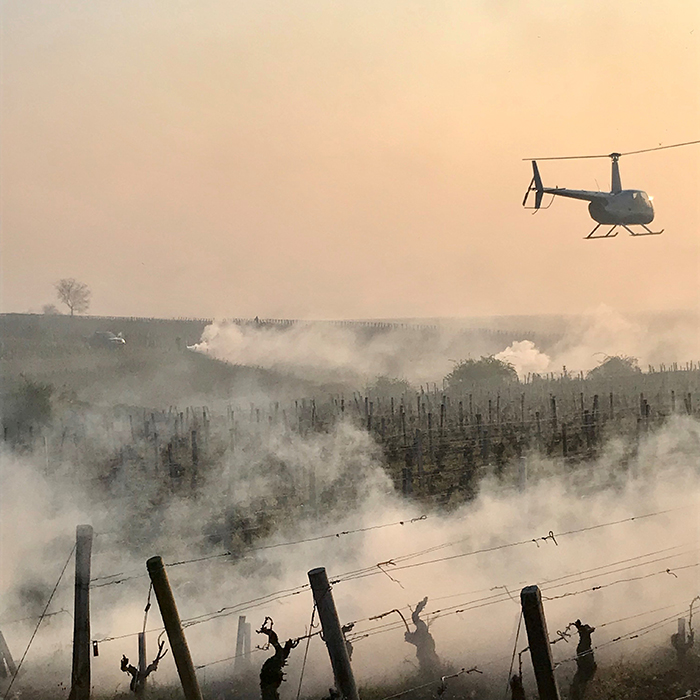 Producers battle spring frosts in Burgundy. Photograph: Jean-Nicolas Méo of Méo-Camuzet