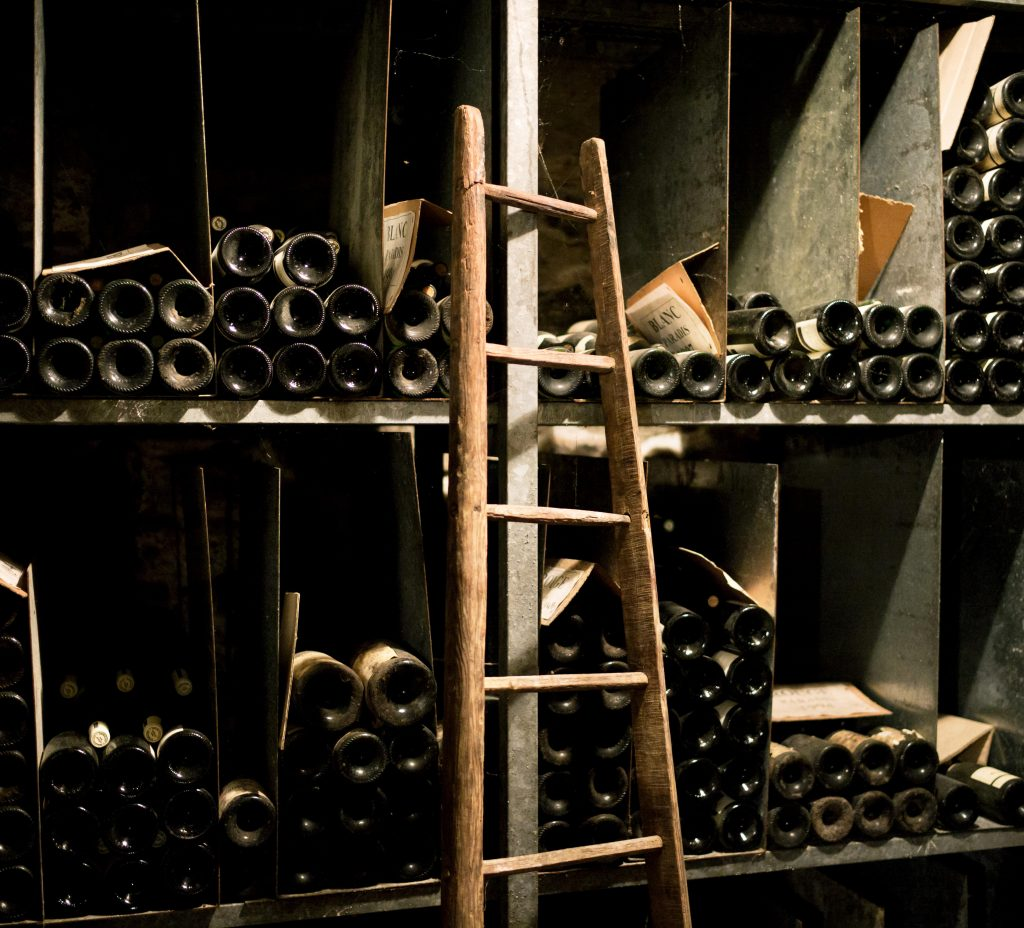 Burgundy 2019 cellar