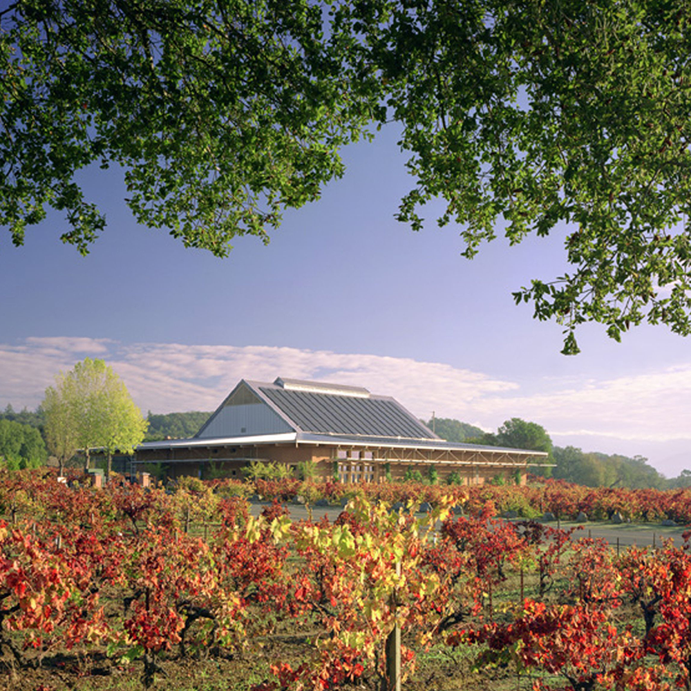 Ridge Vineyards winery at Lytton Springs