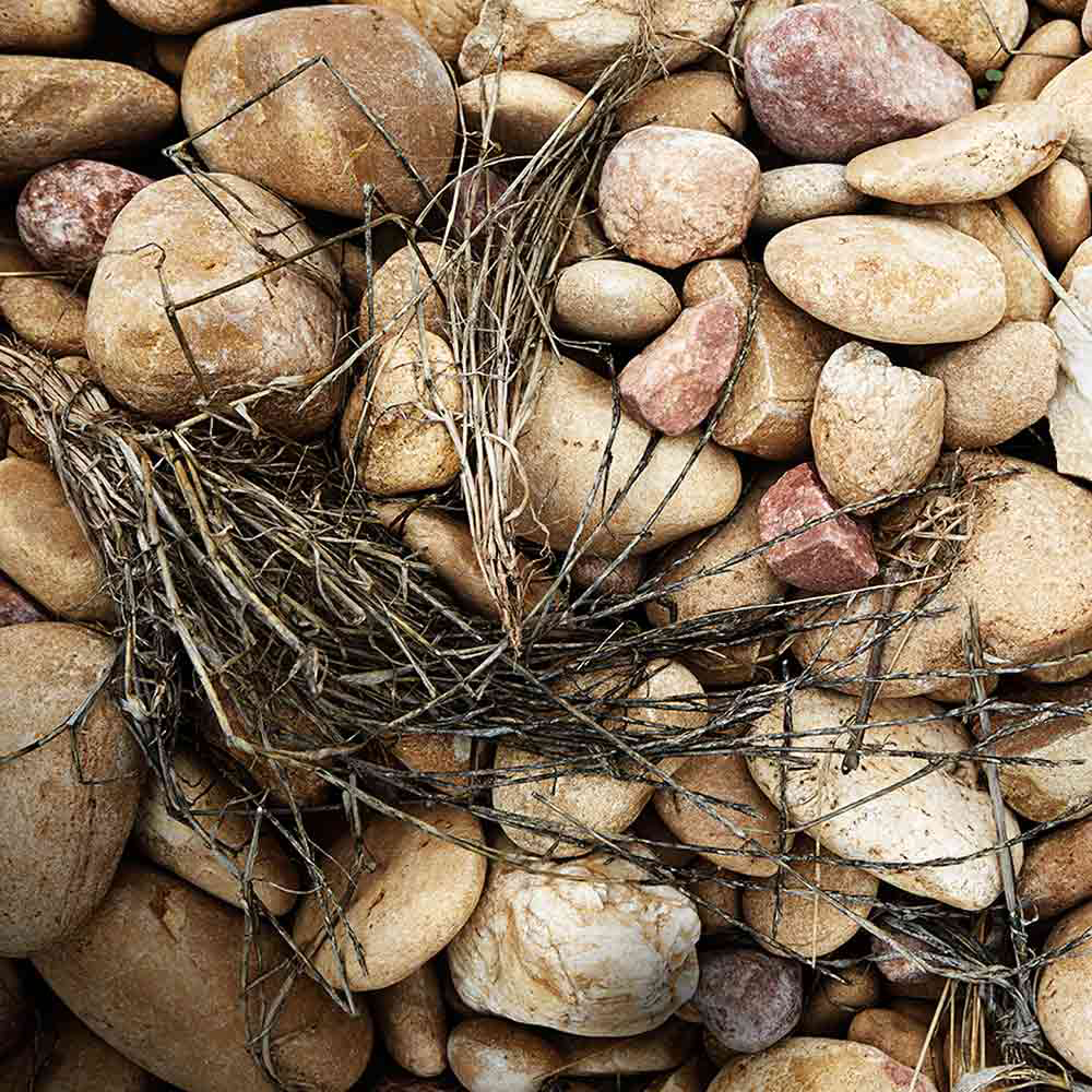 An image of stones used in vineyards in Southern Rhone